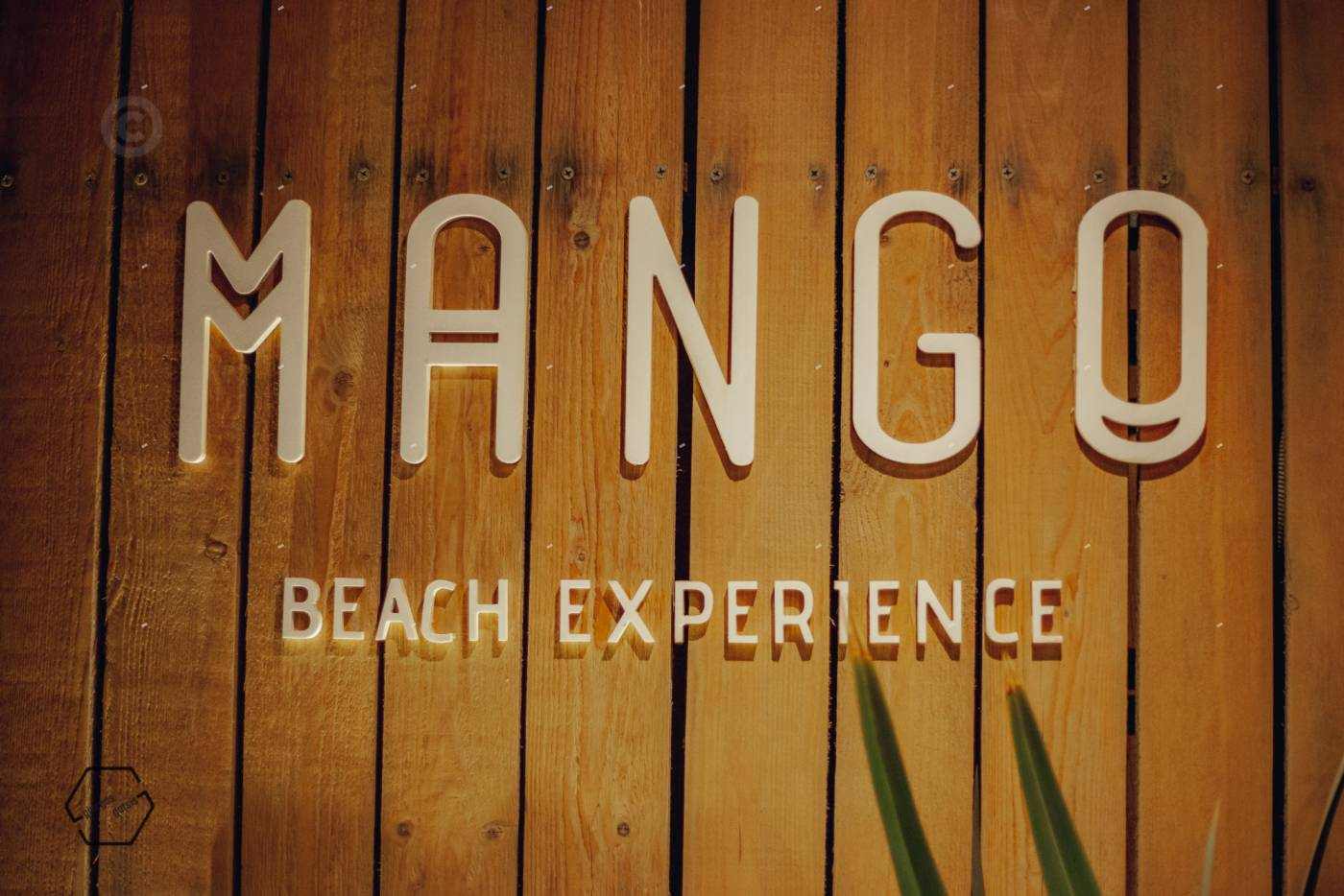 γαμήλιο πάρτι mango Πρέβεζα