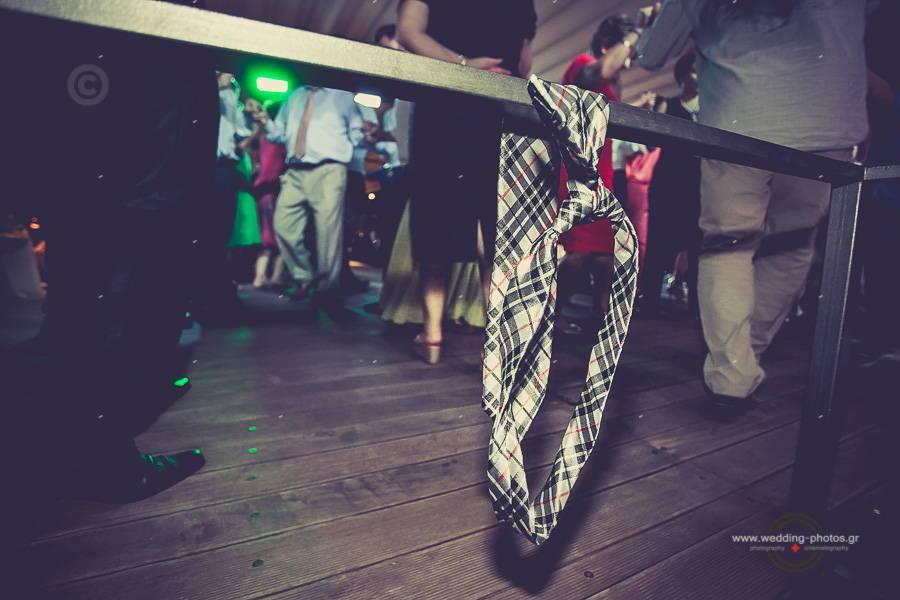 084 wedding reception party pelion