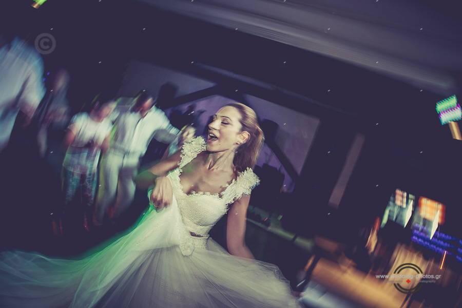 092 wedding reception party pelion